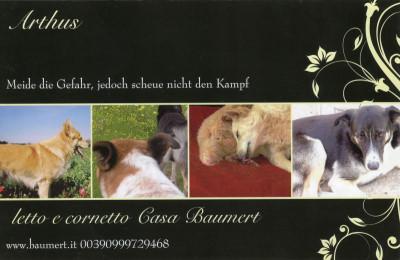 Postkarte Arthus